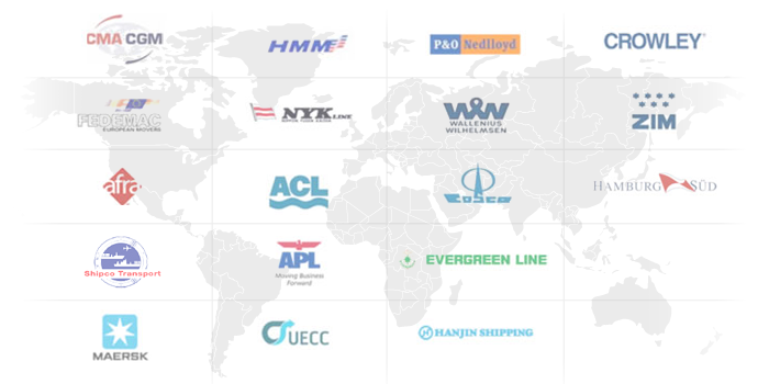 Global Network of Partners